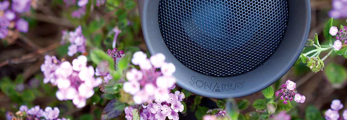Sonarray_Top_Shot_3_060436